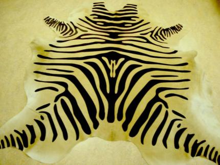 zebra on caramel.jpg